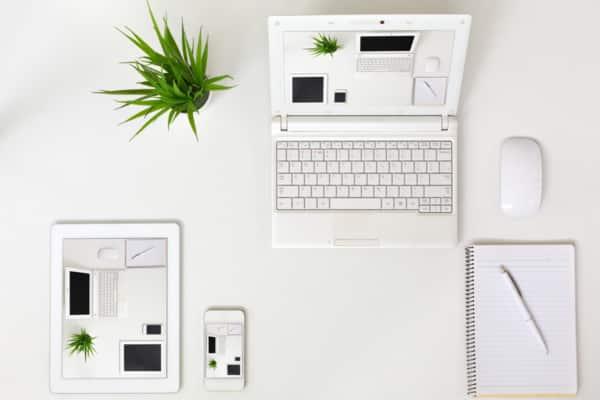 Current Web Design Trends In Coffs Harbour